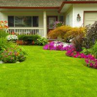 8 consejos esenciales para mantener fresco tu jardín privado Jardinea Diseño de jardines y mantenimiento