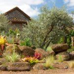Como diseñar un jardín de rocas. Parte 1