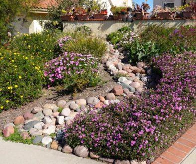 Como diseñar un jardin de rocas. Parte 3