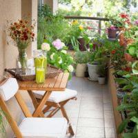 Como montar y preparar un jardin en tu propia terraza. Jardinea Diseño de jardines y mantenimiento en Madrid
