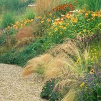 Descubre gratis las tendencias de diseño para tu jardin