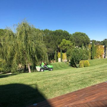 Mantenimiento de Proyecto de Jardinería en Centro Empresarial de la Moraleja de Madrid