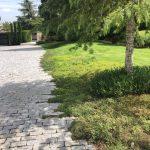 Mantenimiento de Proyecto de Jardinería y paisajismo para un edificio de oficinas en Madrid Acceso vehículos