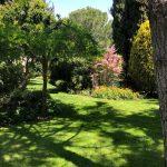 Mantenimiento de Proyecto de Jardinería. Urbanización Mirasierra en Madrid