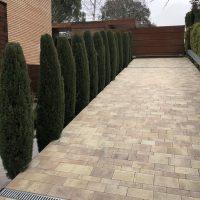 Mantenimiento-de-Proyecto-de-Jardineríaen-chalet-unifamiliar-en--La-Moraleja-de-Madrid Rampa acceso