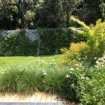 Mantenimiento de jardín para vivienda privada en La Moraleja de Madrid Jardin Natural