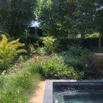 Mantenimiento de jardín para vivienda privada en La Moraleja de Madrid Piscina 1