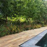 Mantenimiento de jardín para vivienda privada en La Moraleja de Madrid Piscina 2