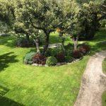 Mantenimiento de jardin en Alcobendas- Obras-Mantenimiento-jardines-Madrid-Jardinea
