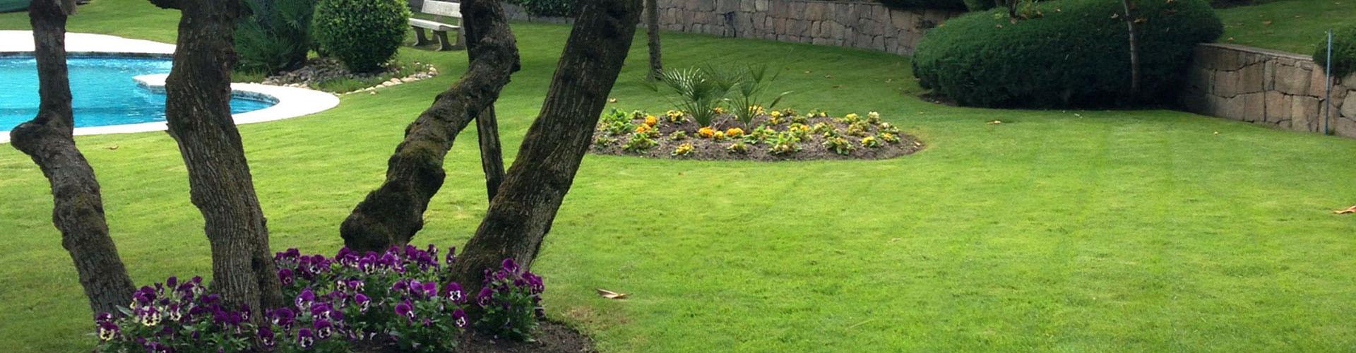 Paisajismo y Mantenimiento de jardines en Madrid Jardinea