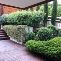 Obra y Proyecto de Paisajismo y jardinería para Chalet unifamiliar en la Moraleja de Madrid