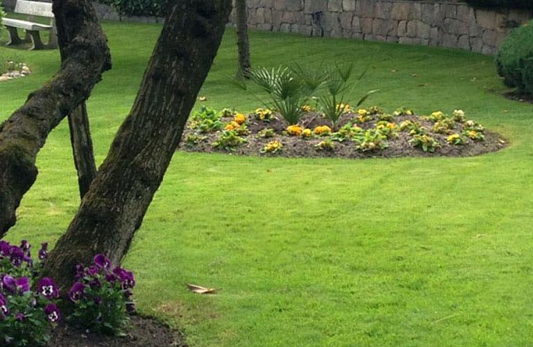 Paisajismo y Mantenimiento de jardines en Madrid La moraleja y Alcobendas Jardinea