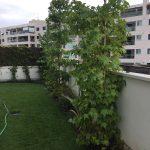 Paisajismo y Obra de jardineria en Alcobendas.