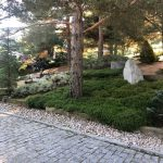Proyecto de Paisajismo y jardinería para Chalet de Collado Mediano Camino