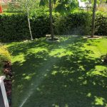 Proyecto de jardineria y paisajismo para chalet Madrid. Encinar de los Reyes despues riego