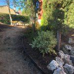 Proyecto de jardineria y paisajismo para chalet Madrid. Encinar de los Reyes Antes Hacia entrada 2