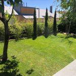 Proyecto de jardineria y paisajismo para chalet Madrid. Encinar de los Reyes Lateral pinos