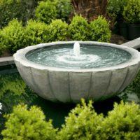 Quieres reducir tu recibo de electricidad con la jardineria. Jardinea Jardineros Madrid